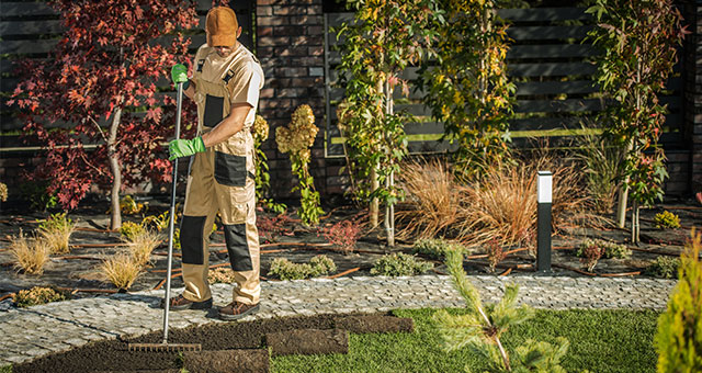 Professional Landscaping Company In Fort Worth